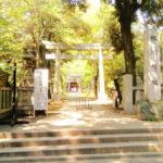 赤坂氷川神社 参道