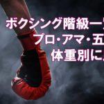 ボクシング階級一覧!プロ・アマ・五輪を体重別に比較